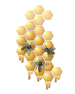Bees and honeycomb Annual Giving Campaign logo